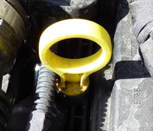 Oil Dipstick location labelled for show me tell me questions