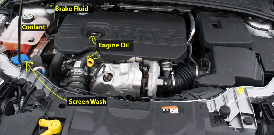 Ford Focus tdci 1.5 diesel Engine Diagram